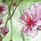 Apricot Blossoms - Pink Flowers in Watercolor by Ela Steel