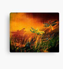 Dragonfly...Towards The Light  Canvas Print