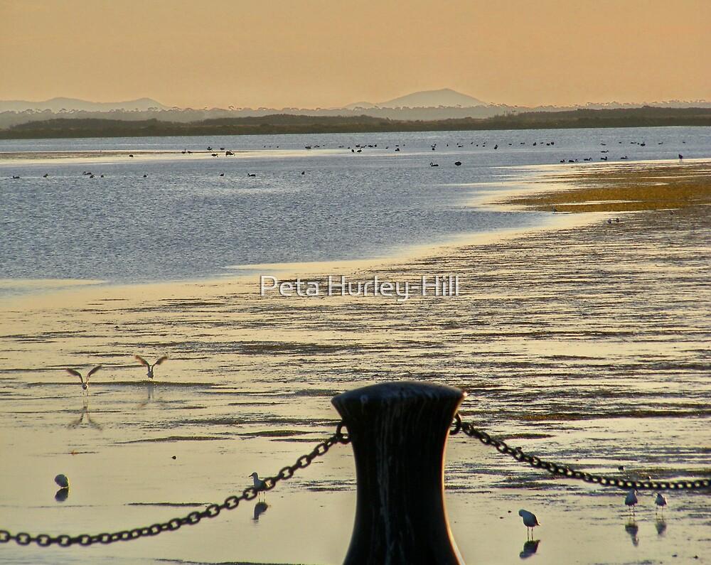 low tide by Peta Hurley-Hill