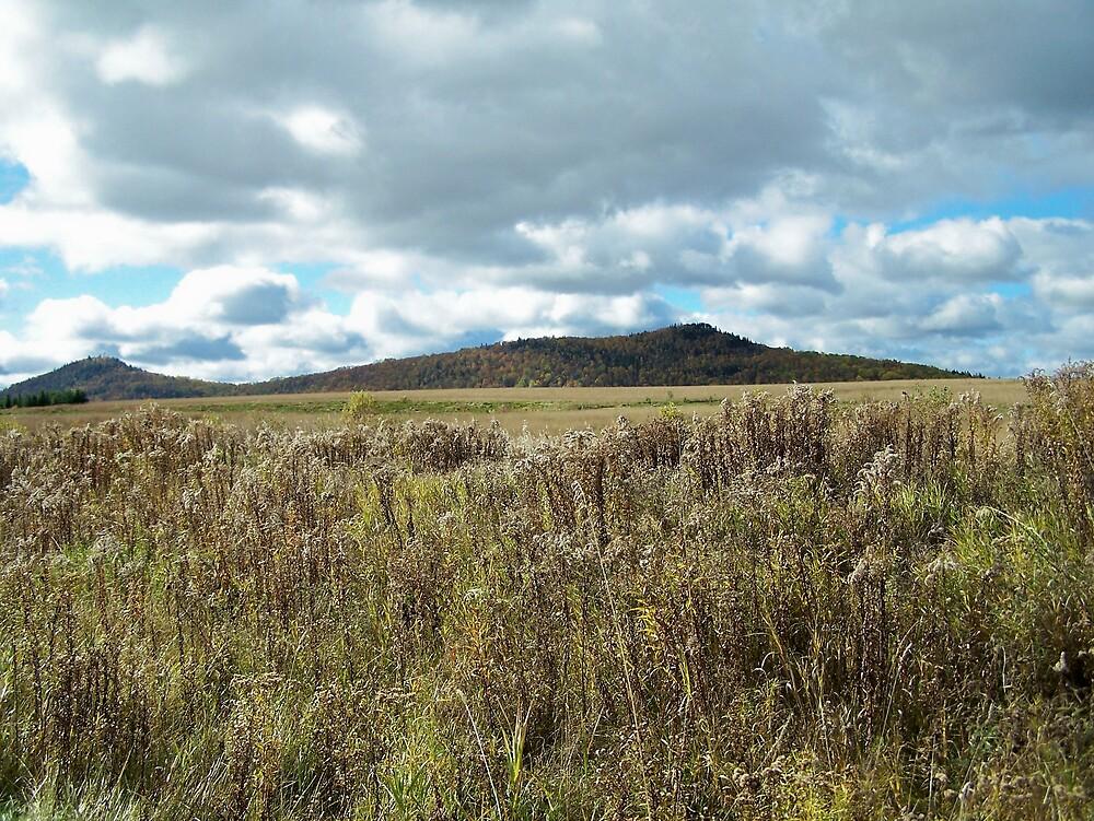 Aroostook Hills by Gene Cyr