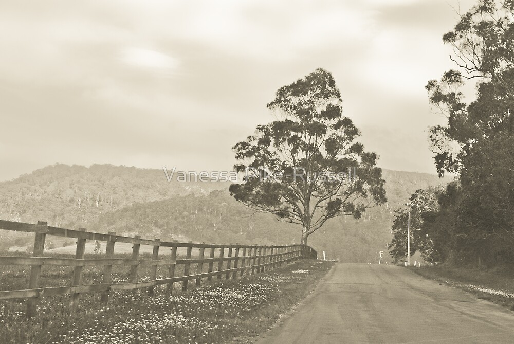 Yellow Rock, Albion Park, Landscape by Vanessa Pike-Russell