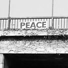 Peace on a Los Angeles Freeway by Laurie Allee