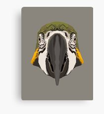 Topographic: Blue-and-Yellow Macaw Canvas Print
