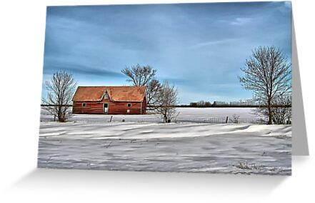 The Red House by Vickie Emms