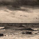 The Seaside 2 by bubblebat