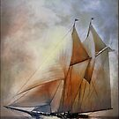 Schooner America in 1910. by andy551