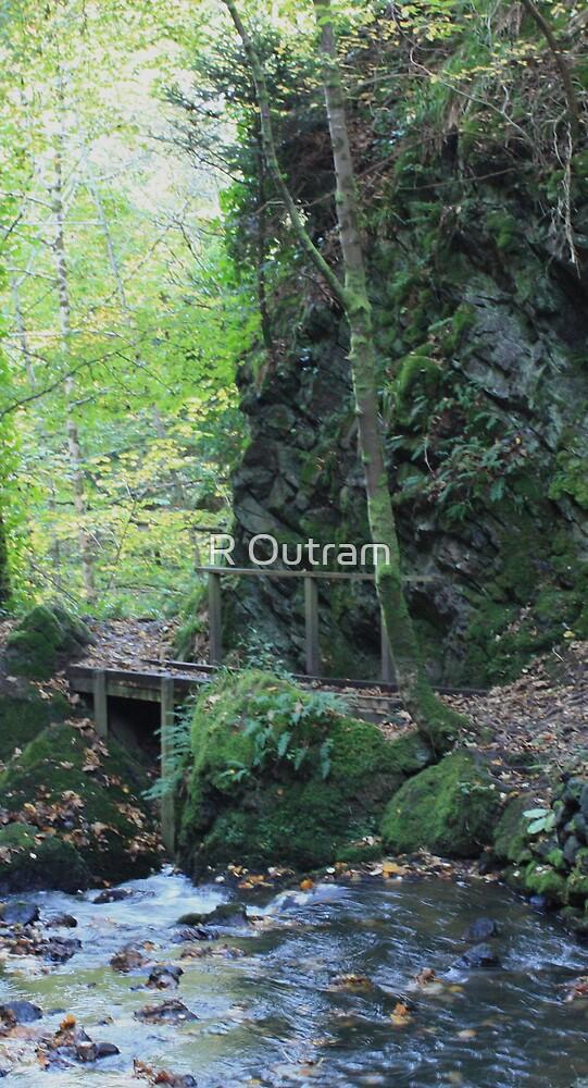 Fairy Glen 2 by R Outram