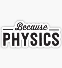 Because Physics Sticker