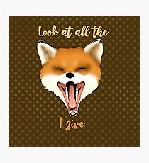 Look at all the Fox I give... Photographic Print