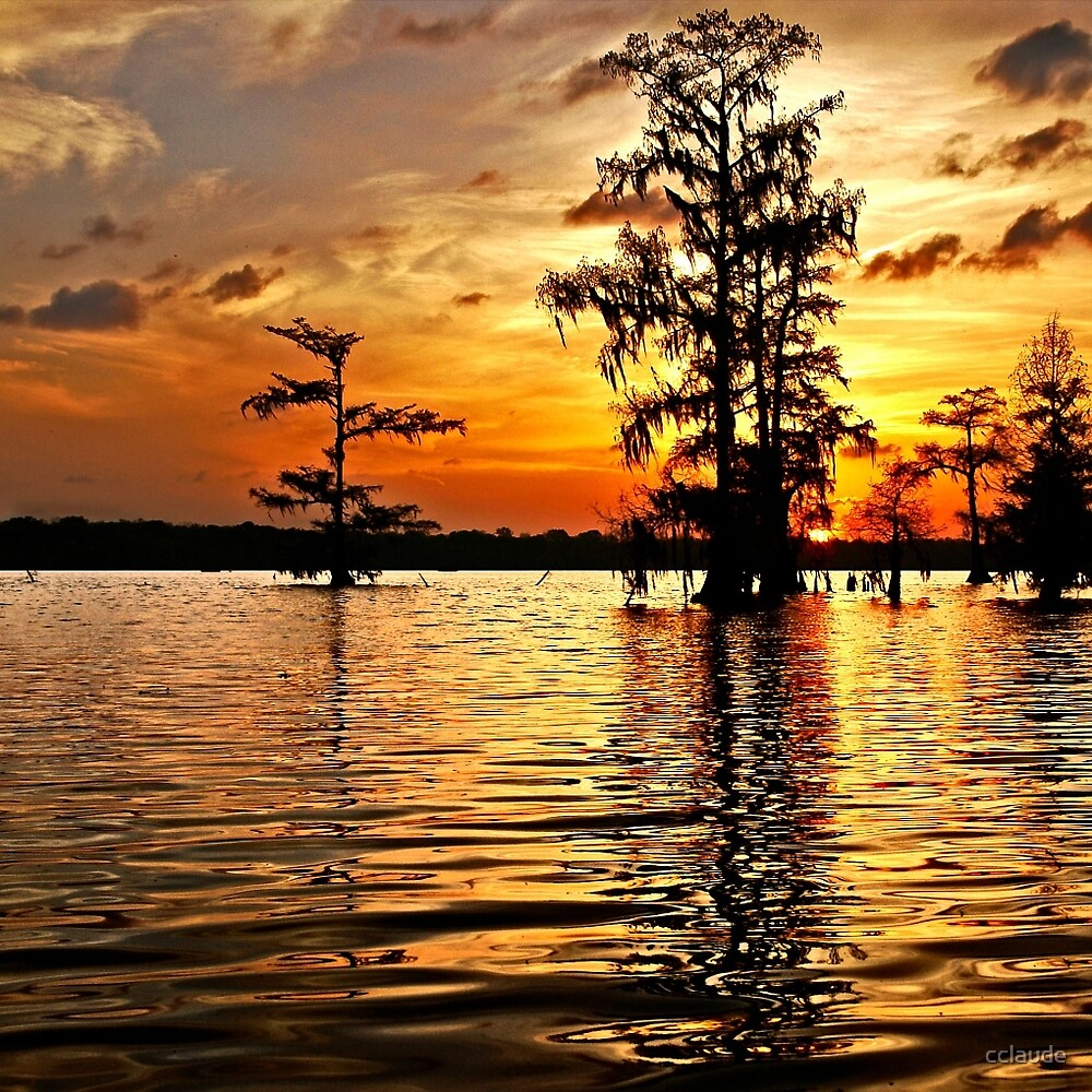 Sunset on Lake Martin by cclaude