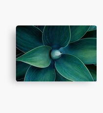 Floral green pattern Canvas Print