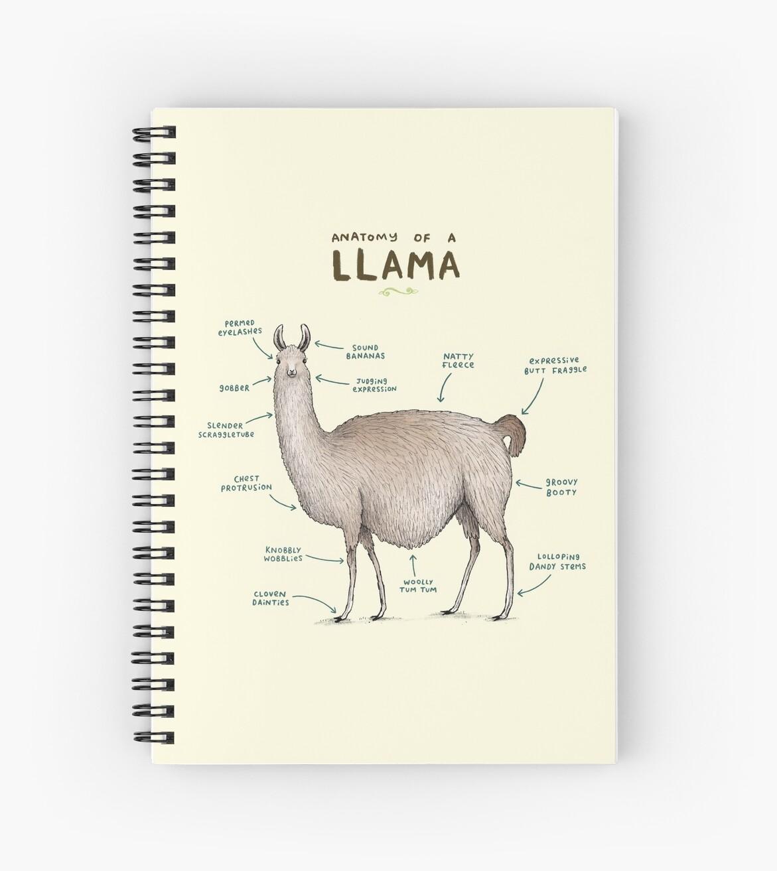 «Anatomía de una llama» de Sophie Corrigan