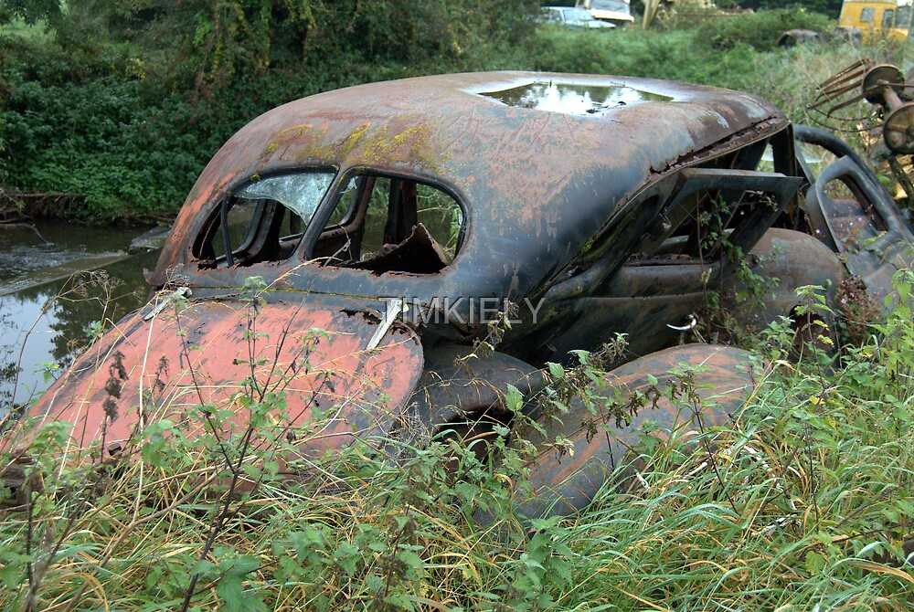 LAID TO RUST  by TIMKIELY