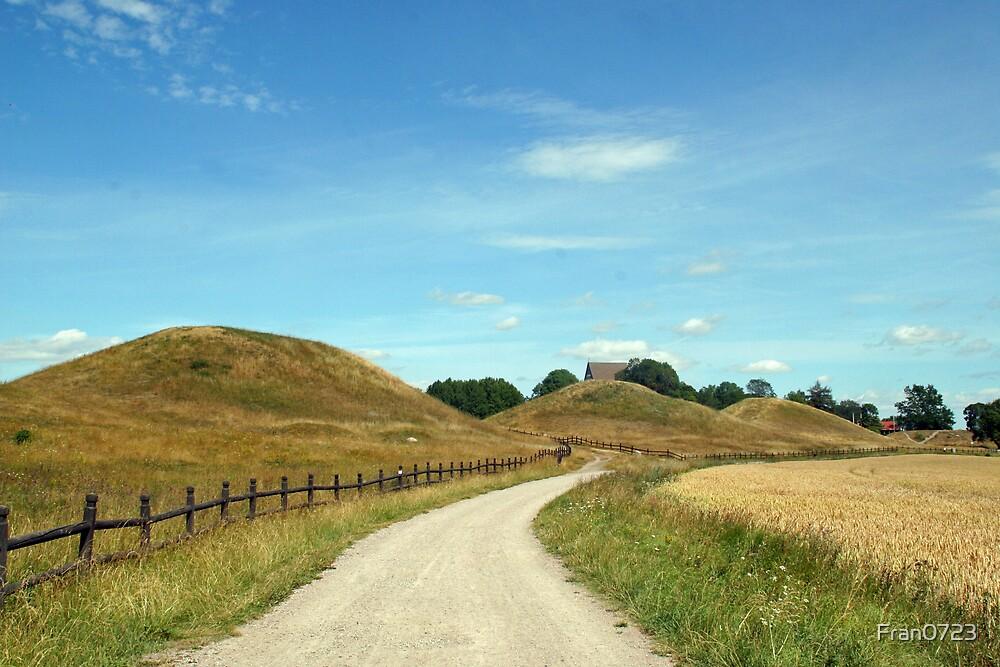 Vikings burrrial mound by Fran0723