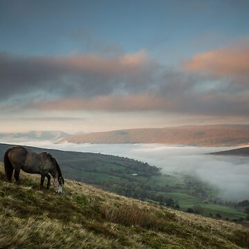 Dentdale Horse and Cloud Inversion by ademcfade