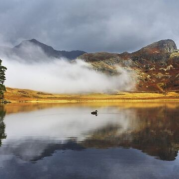 Blea Tarn, Lake Disctrict by ademcfade