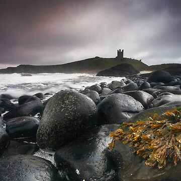 Dunstanburgh Castle  by ademcfade