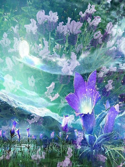 LIlac Delight by Julia Mainwaring-Berry