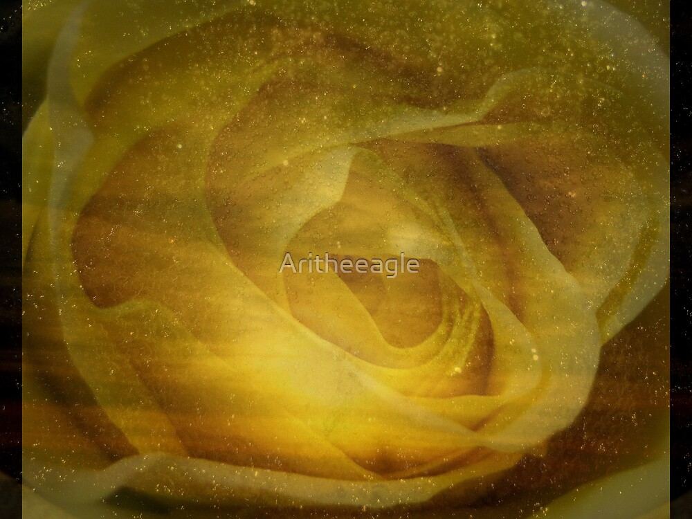 Ari's PHOTOART: LAW OF SUCCESS IS THE LAW OF PURE POTENTIALITY by Aritheeagle