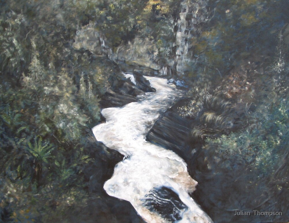 Leven Canyon in Winter by Julian Thompson
