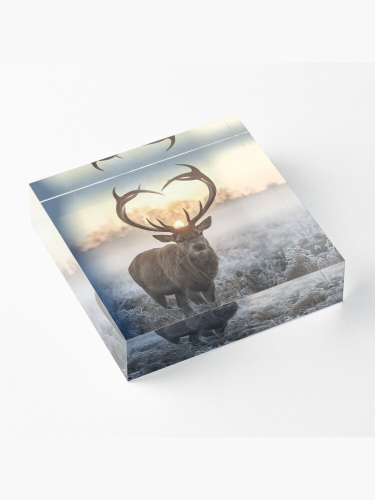 Alternate view of Christmas Love Stag heart shaped antlers Acrylic Block