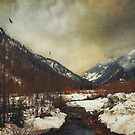 winter valley by Dirk Wuestenhagen