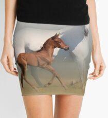 Ulia Mini Skirt