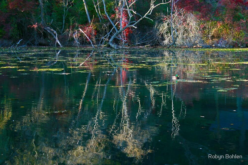 Reflection pond  by Robyn Bohlen