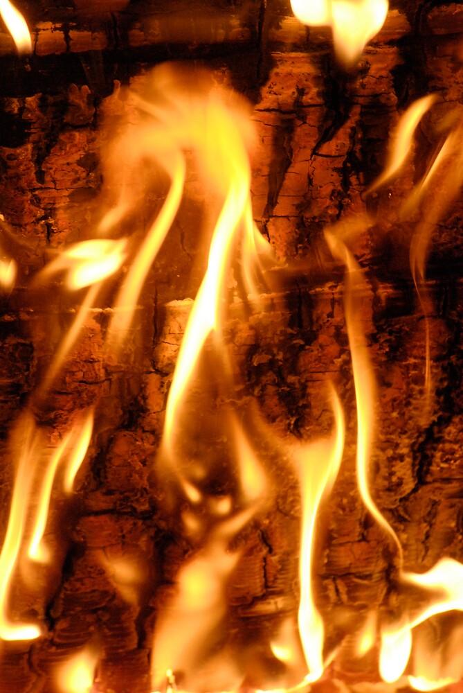 Spirit Fire 1 by Adam Taylor