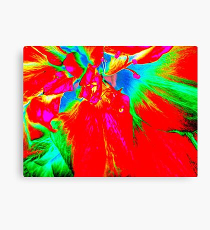 Abstract Hibiscus  Canvas Print