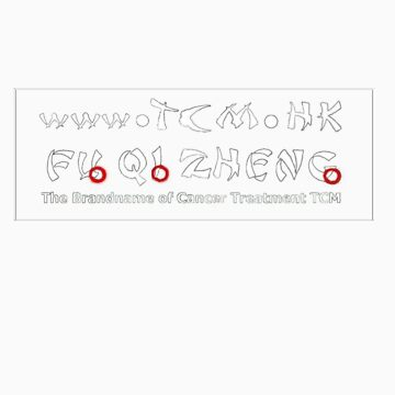 FuQiZheng horizontal logo in white by FuQiZheng