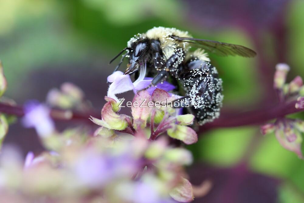 I'm full of Pollen by ZeeZeeshots