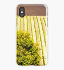 Rows of Vines in a Vineyard in Tuscany - Italy iPhone Case/Skin