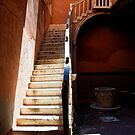 Venice - Stare at the Stairs by Mark Baldwyn