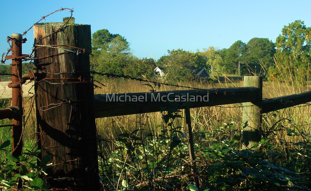 Fence Post by Michael McCasland