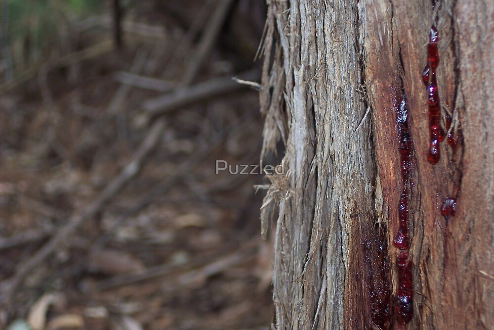 Blood of the Innocent by Puzzled