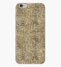 Egyptian Hieroglyphics iPhone Case