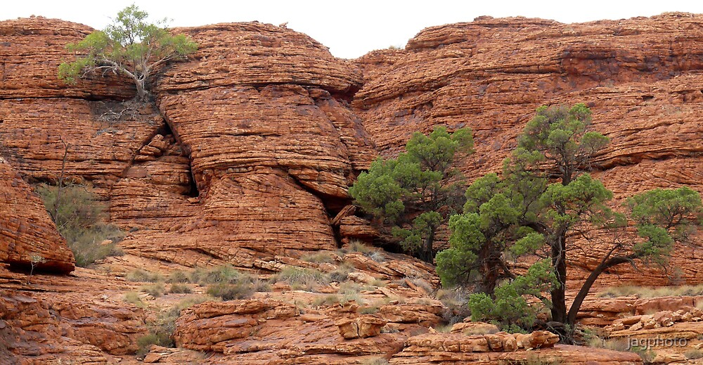 Kings Canyon by jagphoto