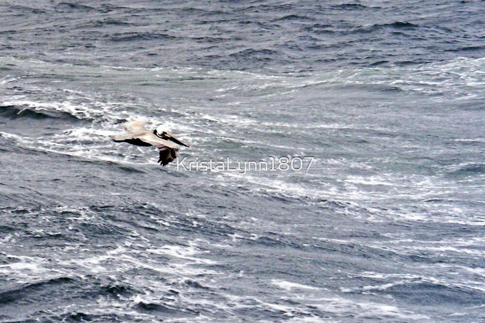 Pelican Flying by KristaLynn1807