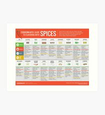 Cook Smarts' Guide to Flavoring with Spices Art Print
