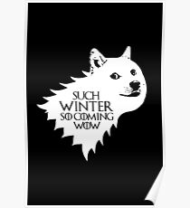 Ser Wow of House Doge Poster