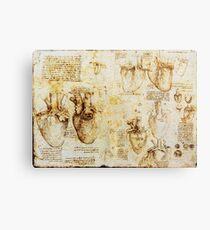 Herz und seine Blutgefäße von Leonardo da Vinci Metalldruck