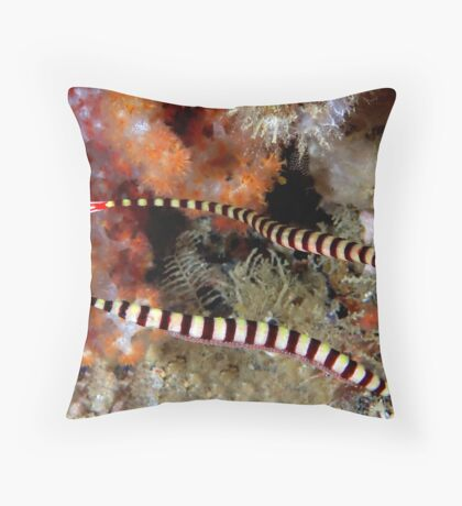 Banded Pipefish Throw Pillow