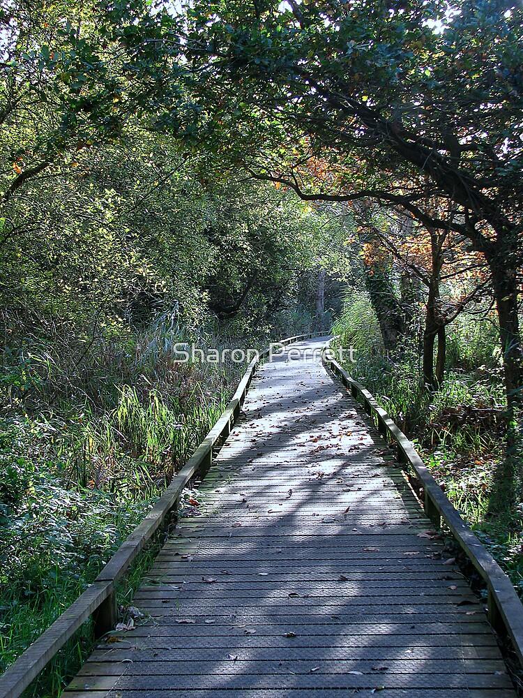 The Walkway by Sharon Perrett
