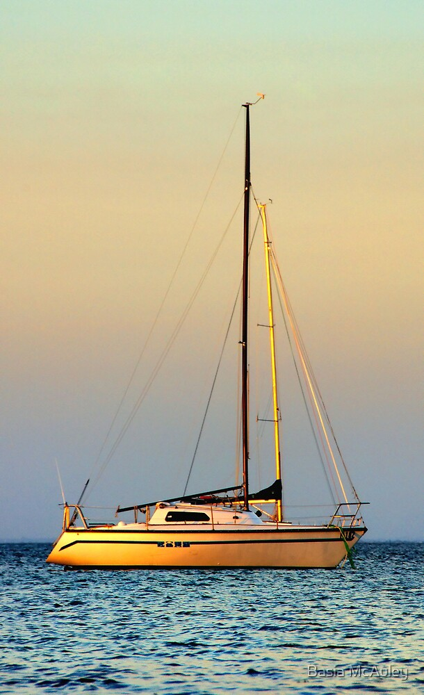 Mornington Sunset by Basia McAuley