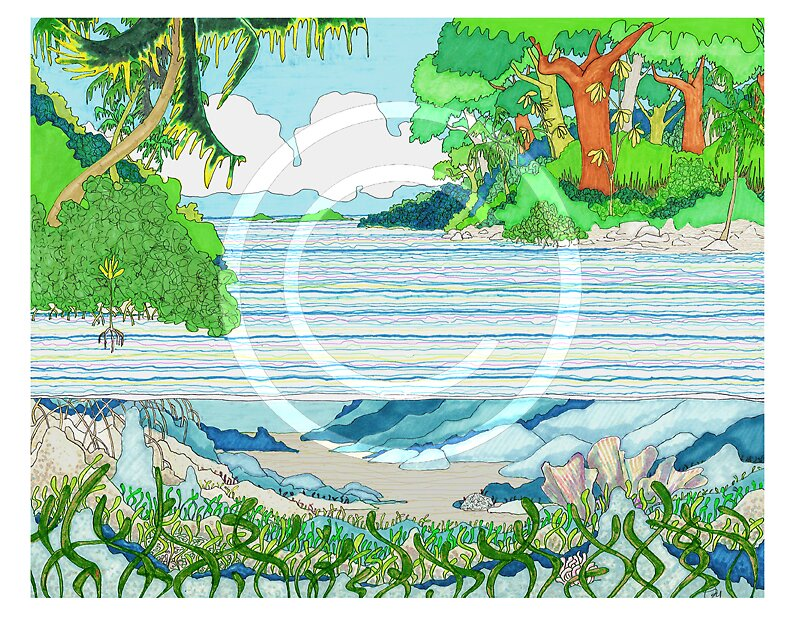 Mangrove by ozyink