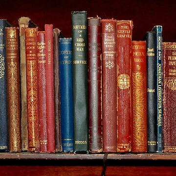 Mini library ~ of Classic books by LaurieMinor