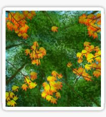 Autumn Trees Sticker