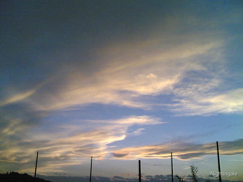 Sky by Nightingale