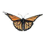 Mozzie the Monarch by Djjacksonart
